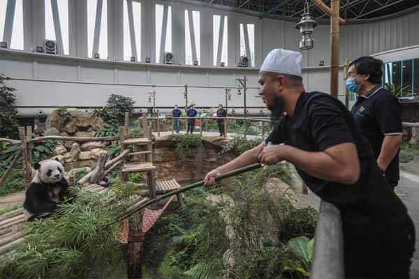 Ebit Lew sumbang 200kg daging segar untuk Zoo Negara