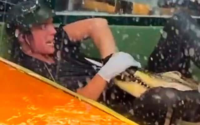 [Video] Detik cemas seorang wanita digigit buaya dan diheret masuk kolam buaya